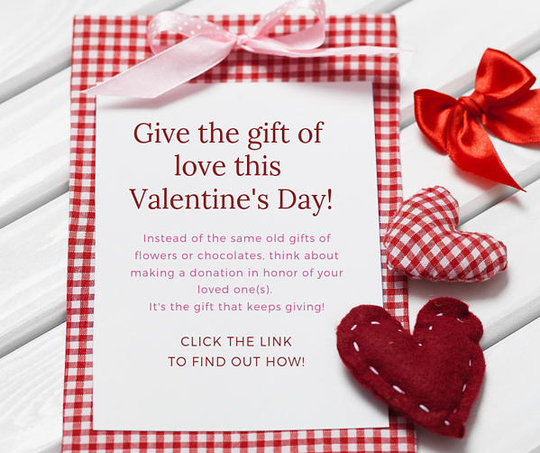 Give the gift of love this Valentine's Day!