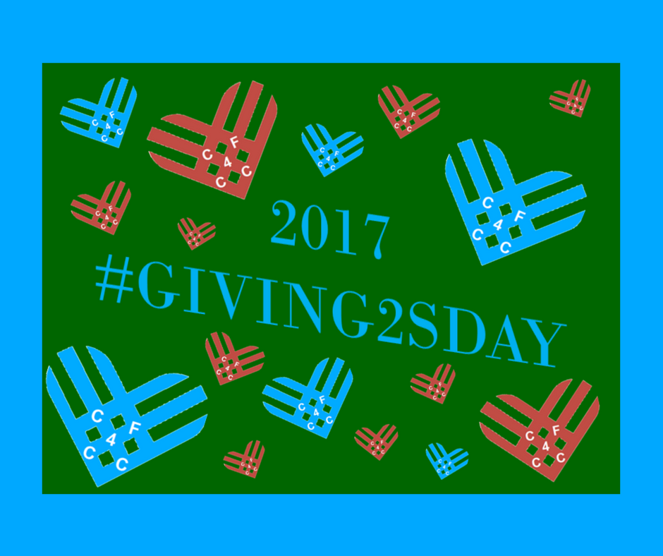 #Giving2sday 2017 Results PR.png